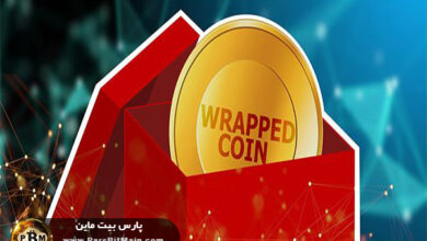 wrapped-token